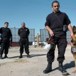Rights and duties of dog handler