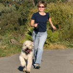 Lose Weight, Stay Active – Health Benefits Of Dog Ownership