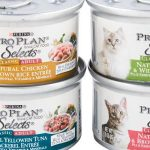 Hypoallergenic wet food lamb and rice