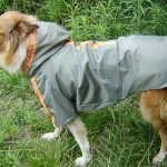 Waterproof Hooded Raincoat for Dog