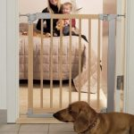 Security barrier separating large spaces for dogs
