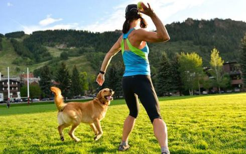 Exercises for a dog with osteoarthritis