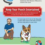 How to Get Your Dog to Behave Well in an Apartment Home