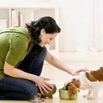 All that You Wanted to Know about Owning a Pet