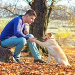 Top Dog Training Guidelines