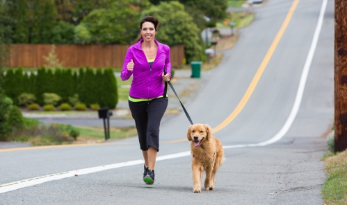 how-to-exercise-with-my-dog-%e2%80%8b%e2%80%8bat-home