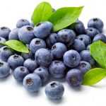 Can Dogs Eat Blueberries- Are Blueberries Safe for Dogs or not?